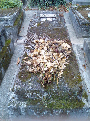 Dried_flowers_on_grave